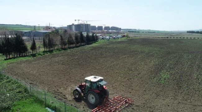 Alipaşa'da 30 Dönüm Arazi Nohut Ekimine Hazırlanıyor