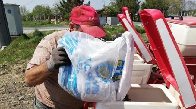 Çayırdere'de 7 Dekar Araziye Ayçiçeği Ekildi