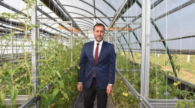 TÜRAM'da 15 Bine Yakın Atalık Sebze Fidesi Yetiştirildi