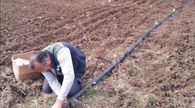 Damlama Sulama Sistemi TÜRAM'da Sebzelere Hayat Verecek