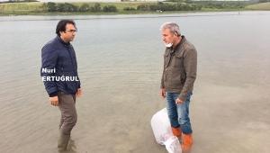 Silivri'deki Göletlere 25 Bin Pullu Sazan Bırakıldı