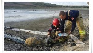 Değirmenköy'de Bataklığa Saplanan Koyun Kurtarıldı