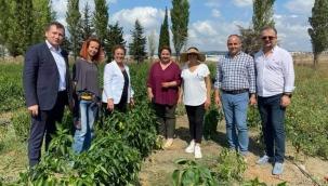Kadın üreticilere CHP'den ziyaret