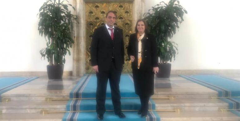 Azder'in Başkent çıkarması