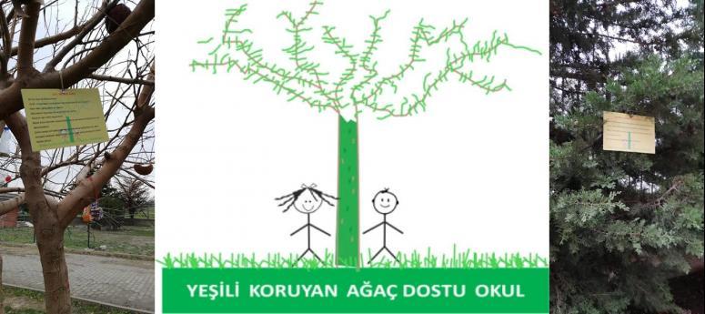 Selimpaşalı öğrenciler ağaçlarla tanışıyor