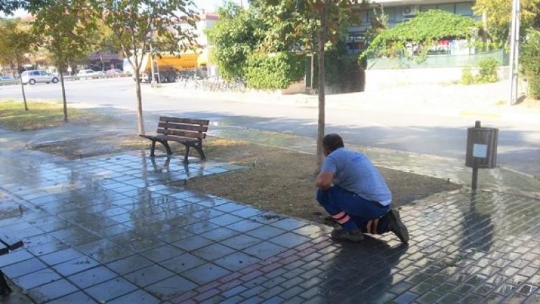 Silivri'de Parklara Otomatik Sulama Sistemi Geliyor