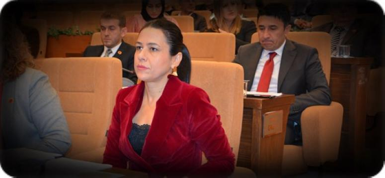 Av. Sultan Aşkın, Silivri Ülkü Ocakları'nda Seminer Verecek